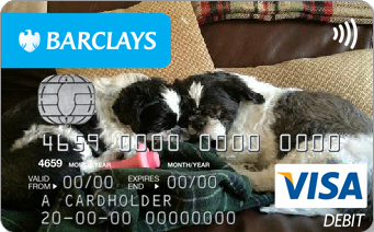 eb_newbcard-dogs.png