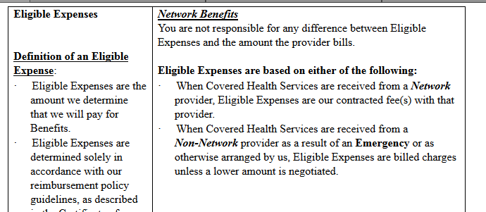 Medical Snippet Expenses.PNG