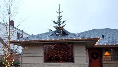 Attached Image: christmas+tree+roof.JPG