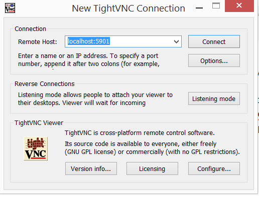 How to run vnc viewer in proxy network - The Cloud (Internet