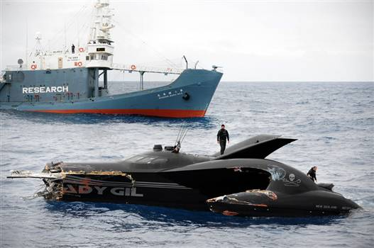 100106_whaling_protest_hmed_12p.rp600x350.jpg