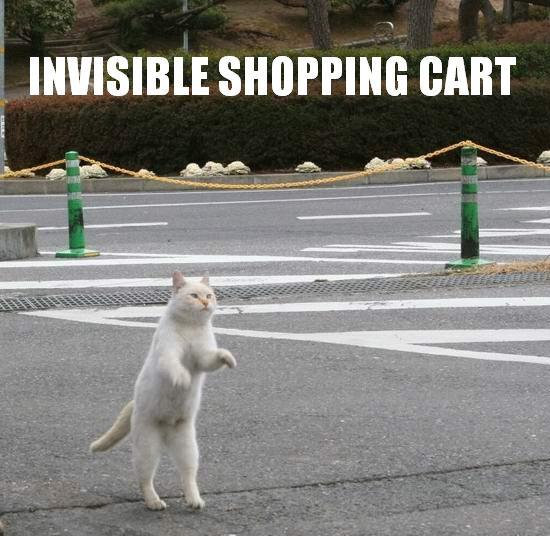 Invisible_Shopping_Cart.jpg