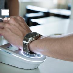 wena-wallet.jpg