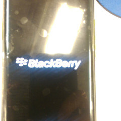 blackberry-venice-aa-71.jpg