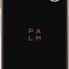 1554410722_palm-phone-gold-back.jpg