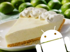 250718325android-key-lime-pie.png