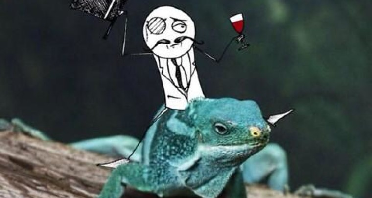Anonymous goes after Lizard Squad for attacking the