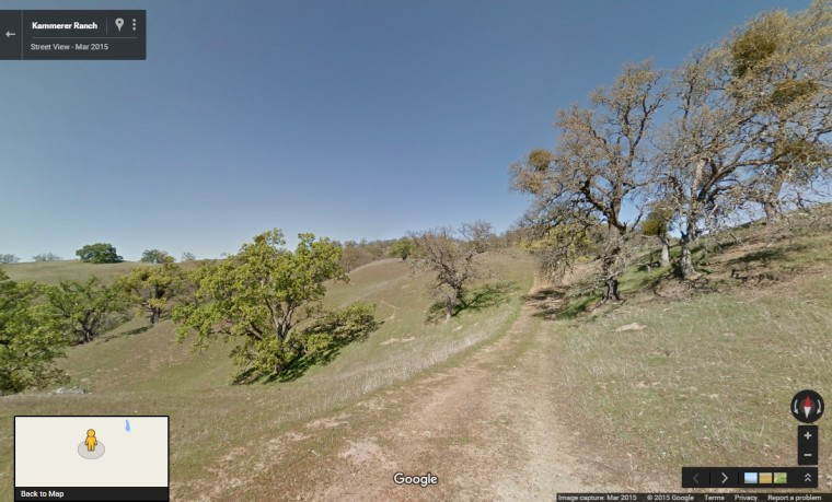Google extends Street View to measure climate change - Neowin on