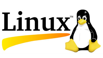 1469434081_linux-logo-without-version-number-banner-sized