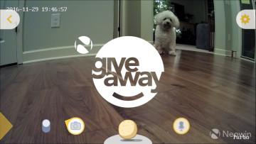 1484580753_furbo-giveaway