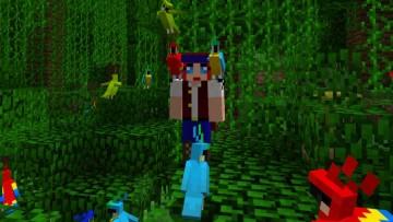 1495047676_minecraft_parrots