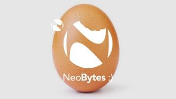 1547486797_egg_header