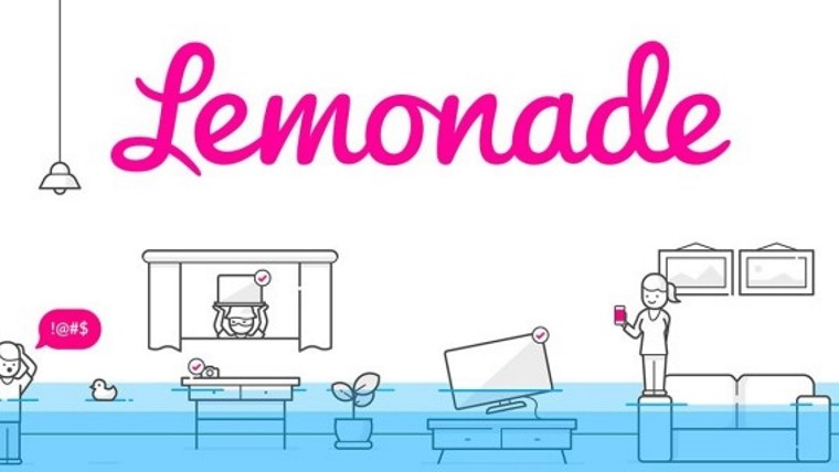 Image result for lemonade insurance