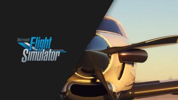 1568492132_flightsim