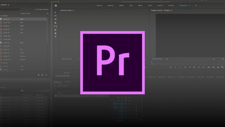 Premiere Pro logo with screenshot in background