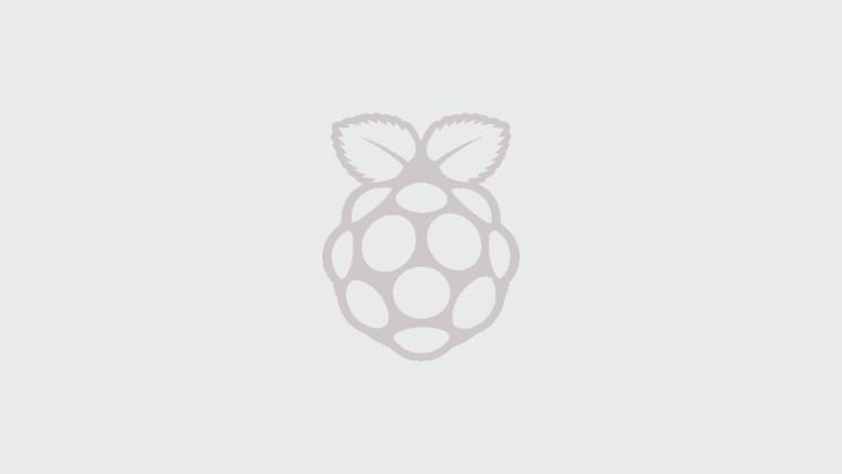 Grey Raspberry Pi logo on grey background