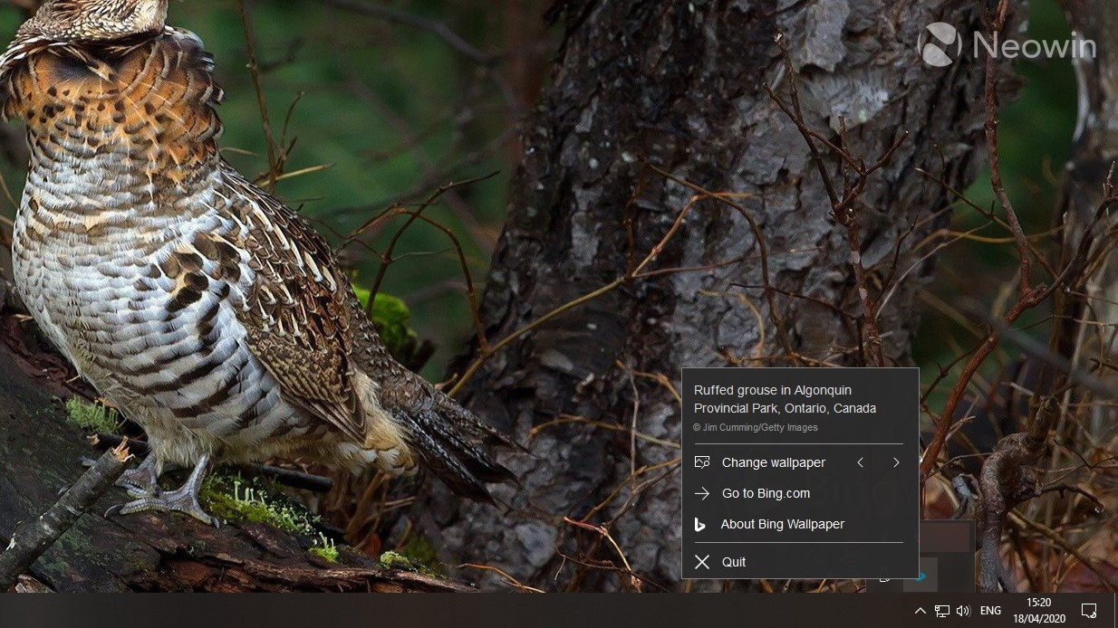 New Bing Wallpaper App Lets You Set Bing S Daily Images As Your