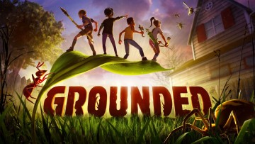 1595941988_grounded