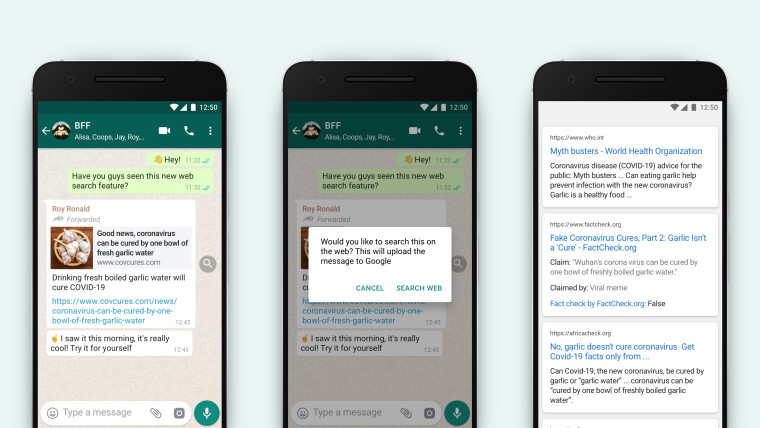 Image shows the new Search the Web feature in WhatsApp in action