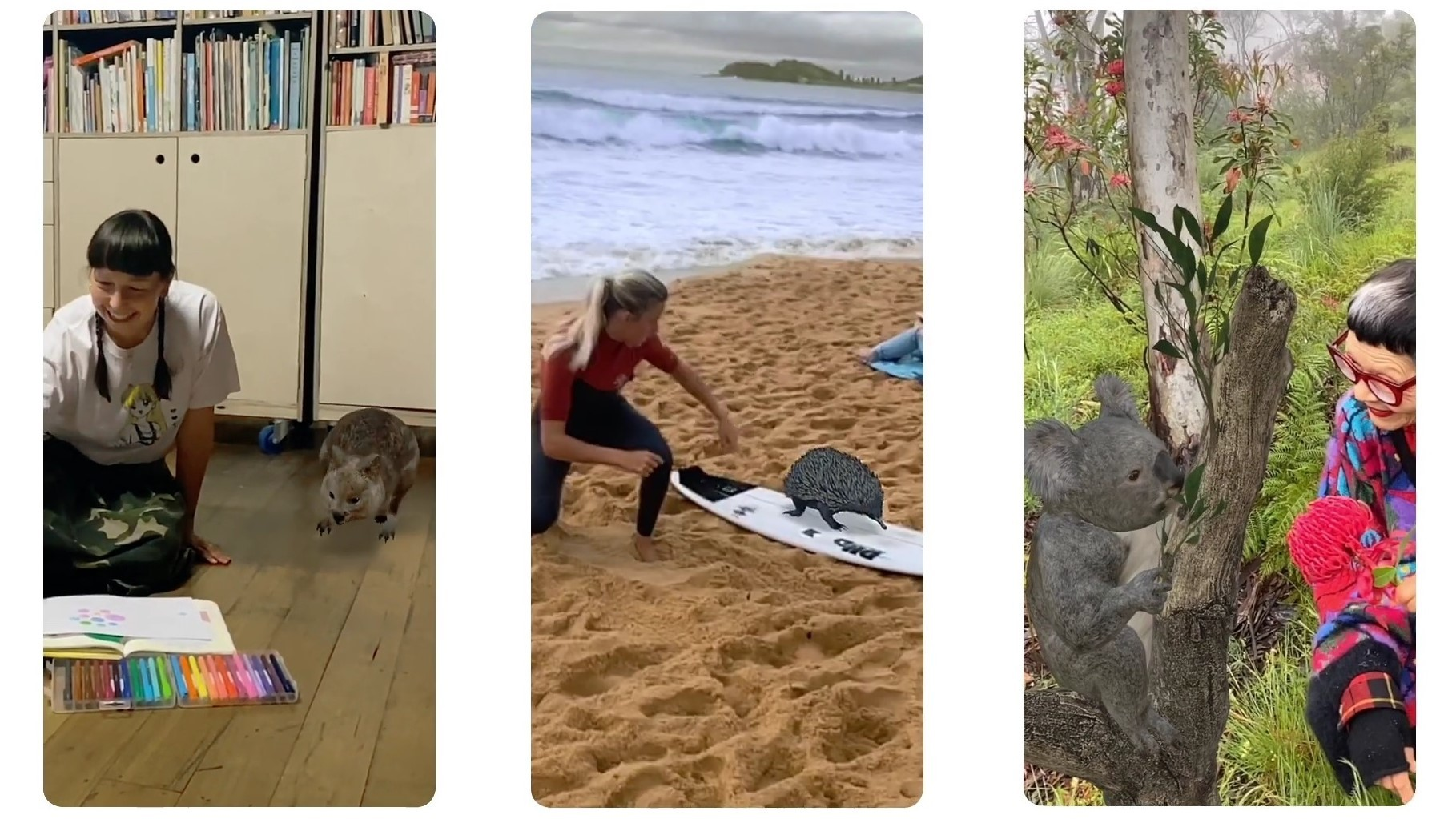 You can now see (and hear) Australian animals in AR on ...