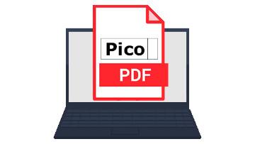 1609840349_picopdf