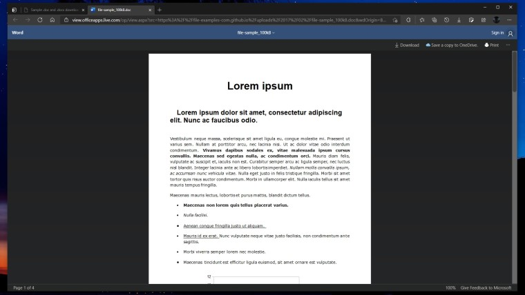 A Word document opened in Office Viewer in the Edge browser