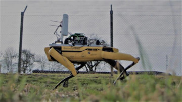 Spot a yellow robot dog checking a fence