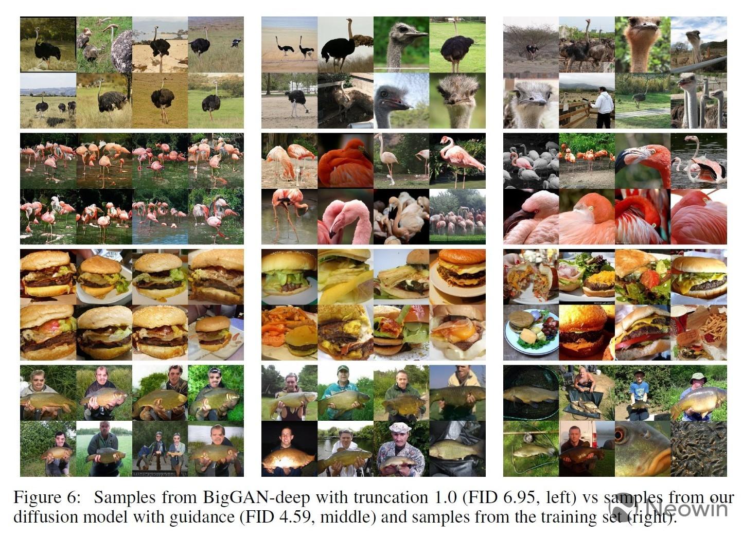 Images from BigGAN-Deep OpenAI&039s Diffusion Models and the training dataset