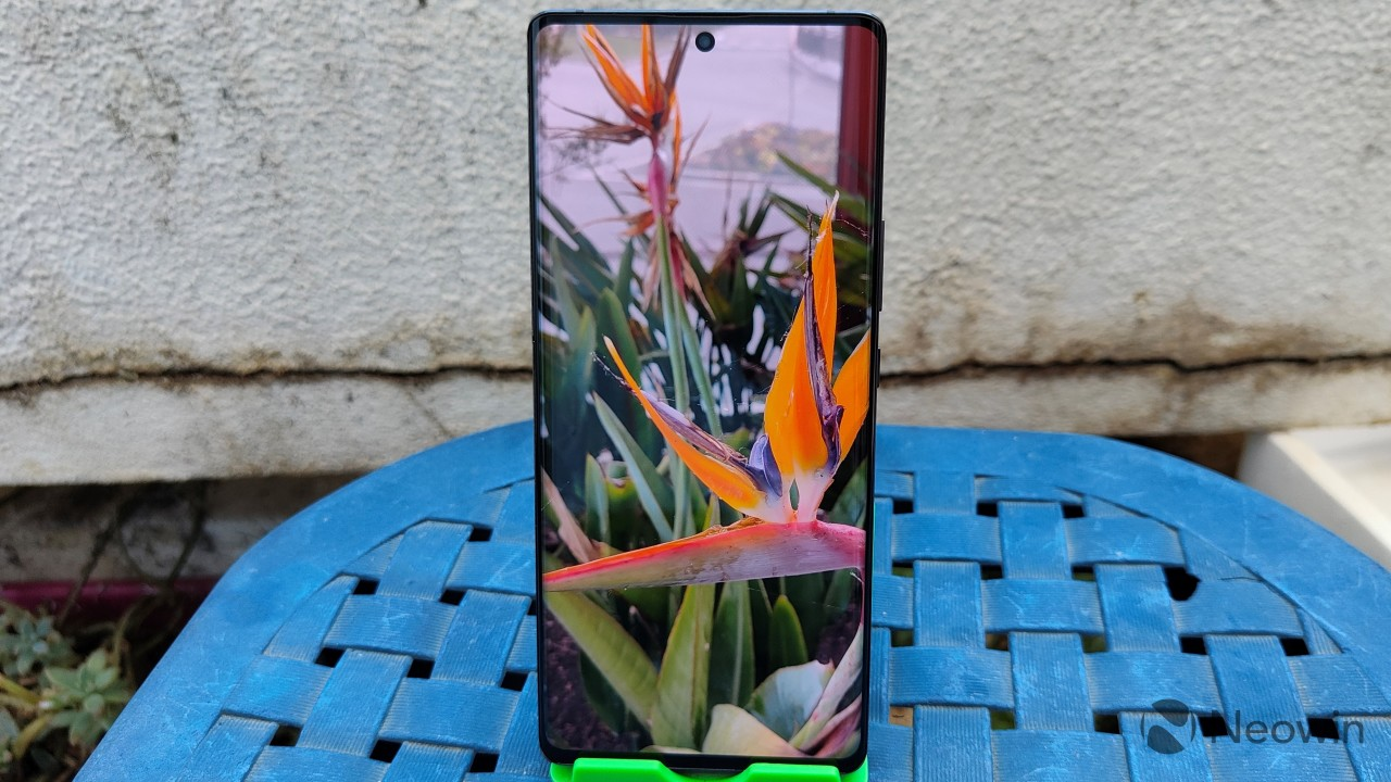The display on the ZTE Axon 30 Ultra showing a picture of an orange flower