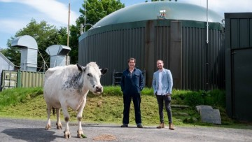 Cryptomining farmer Philip Hughes at the centre with a cow on his right