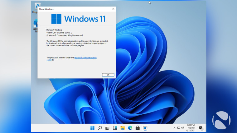 A Windows 11 screenshot showing the version of the OS