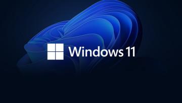 Windows 11 logo white on top of the default Windows 11 wallpaper dark theme