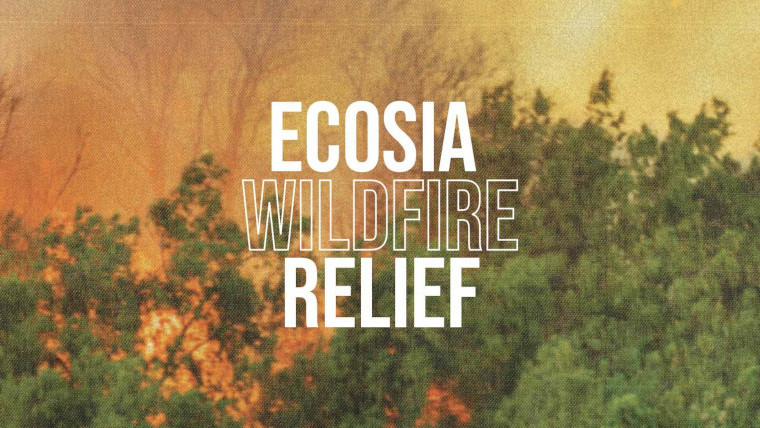 Ecosia Wildfire Relief in front of a burning forest
