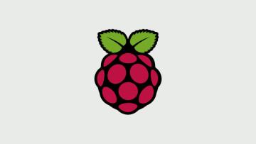 The Raspberry Pi logo on a grey background