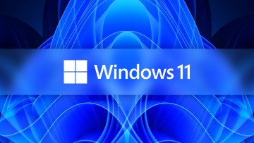 Windows 11 logo white on top of a fractal variant of the Windows 11 default wallpaper