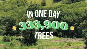 Ecosia says it has planted and saved 333900 trees