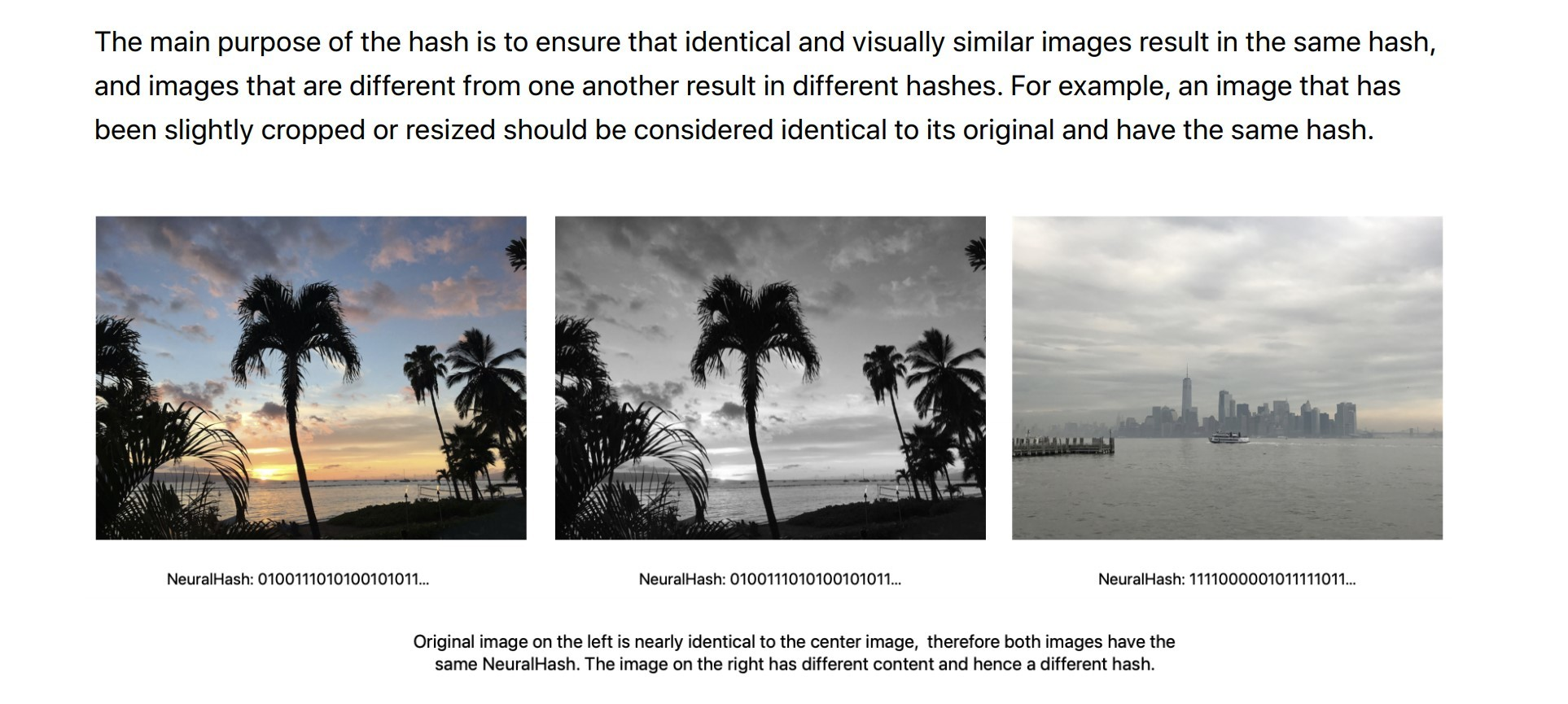 Three pictures showing the differences between hashes Cropping resizing does not change the hash