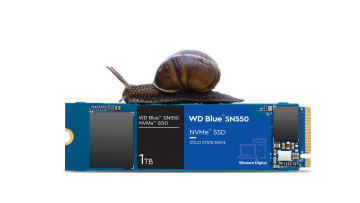 WD Blue SN550 with snail on top