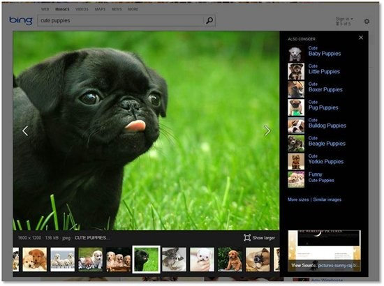 http://www.neowin.net/images/uploaded/3821.puppies-1.jpg